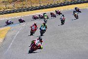 Las ESBK Legends correrán en el Mundial de Superbike